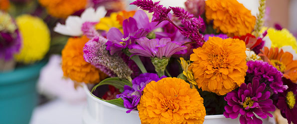 Flowers at SFC Farmers' Market