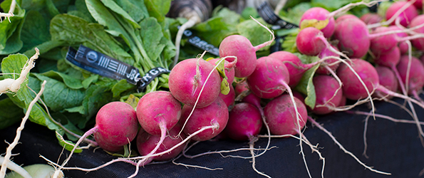 Bundles of Radishes