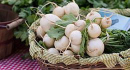 White Radishes in Basket