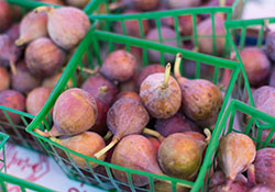 SFC Farmers' Market Figs