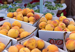 SFC Farmers' Market Peaches