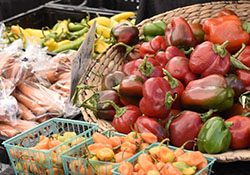 SFC Farmers' Market