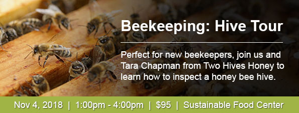 Beekeeping Hive Tour