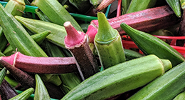 Red and Green Okra