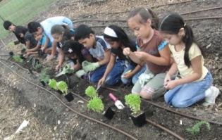 Elementary School Kids gardening.JPG