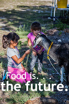 Food is the future