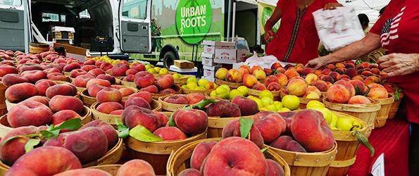 Lightsey Farm Peaches