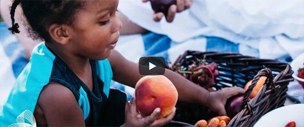 MSDF Video