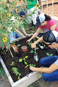 Our Unique Approach to Gardening Education!