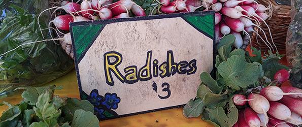 Radish Sign