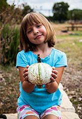 Garden Pumpkin