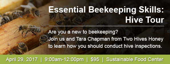Essential Beekeeping Skills: Hive Tour