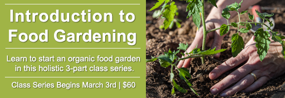 Introduction to Food Gardening