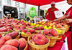 Visit the SFC Farmers' Markets - 4 locations every week!