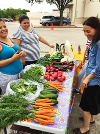 A Farm Stand Story: Padron Elementary