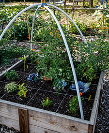 Citizen Gardener Raised Garden Bed
