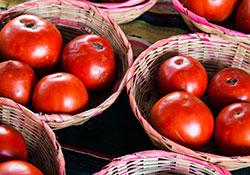 Tomato Baskets