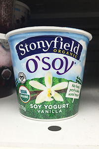 Sugar Ice Cream