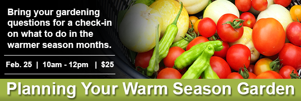 Planning Your Warm Season Garden